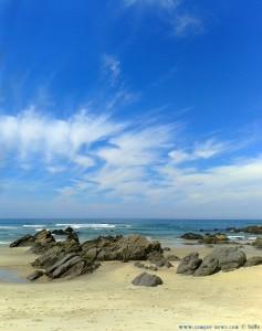 My View today – the Paradise Praia de Afife – Portugal