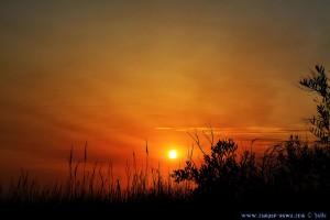 Sunset at Río Cabanes - Praia de Afife – Portugal