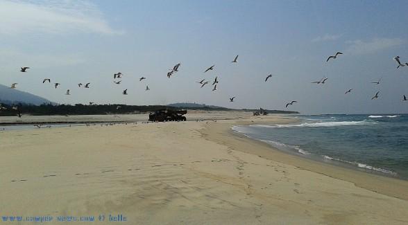 Der schwere Truck verscheucht die Möwen am Río Cabanas - Praia de Afife – Portugal