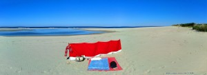 My View today - Praia de Afife – Portugal