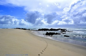 Nicol at Praia de Afife – Portugal