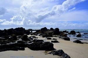Black Rocks with a Seagull at Praia de Afife – Portugal