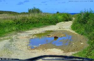 Schlaglöcher und grosse Pfützen auf dem Weg zum Praia de Santa Comba – Spain