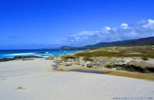 Nicol at Praia de Santa Comba – Spain