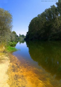 My View today - Río Tormes – Spain