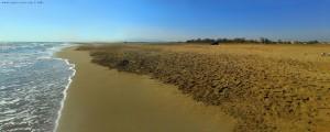 Platja dels Eucaliptus - Els Muntells – Spain