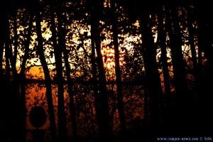 Sunset in Tordera - Spsin