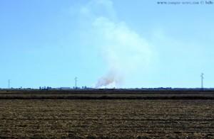 Feuer in der Camargue - irgendwo bei Arles – France