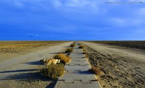 Der lange Weg zum Puderzucker-Strand - Nicol at Platja de l'Eucaliptus – Spain