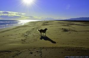 Nicol – ganz dünn mit dem Wind – am Platja de l'Eucaliptus – Spain