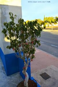 Merry X-Mas an der Tankstelle - Santa Pola – Spain