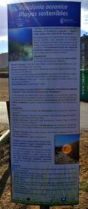 Algen werden von November bis März nicht entfernt - Playas de Santa Pola – Spain
