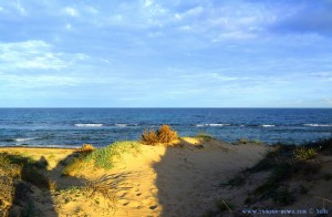 Dunes at Playa de Los Arenales del Sol – Spain