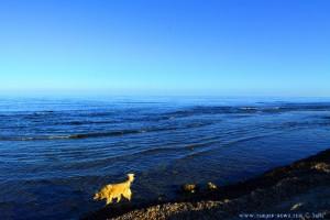 Nicol nimmt ein Fussbad - Platja del Carabassí - Santa Pola – Spain