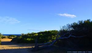 Wie immer - ich spaziere scheinbar alleine am Platja del Carabassí - Santa Pola – Spain