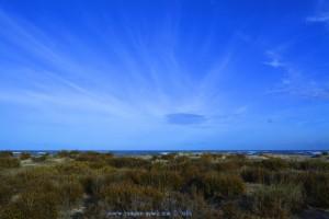 Meine Ansicht von den Büschen - Playa de Torre Derribada - San Pedro del Pinatar – Spain