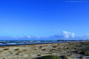 Viele Algen am Playa de Torre Derribada - San Pedro del Pinatar – Spain