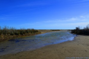 Unser 'Privat-See' im Delta de l'Ebre - Delta del Ebro – Spain (Ansicht nach rechts)