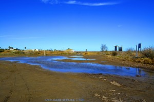 Unser 'Privat-See' im Delta de l'Ebre - Delta del Ebro – Spain (Ansicht nach links)