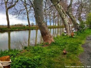 Lunch mit Enten in Cers – France