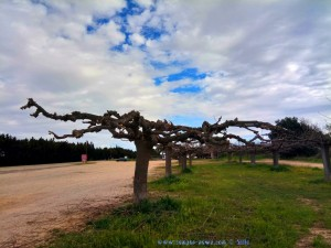 Ein bisschen blauer Himmel - Saint-Gilles – France
