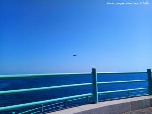 Helikopter – Shuttle-Service zur Euroflora 2018? Vom 21.April bis 5.Mai 2018 - Genova – Italy