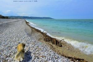 Nicol am Lido Fossacesia Marina – Italy