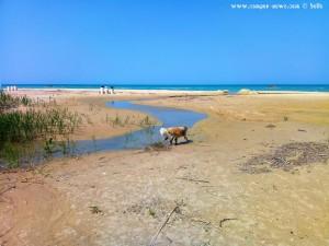 Nicol nimmt gleich ein Fussbad in dem kleinen Fluss am Petacciato Marina – Italy