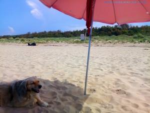 Nicol hat ihren eigenen Sonnenschirm - Petacciato Marina - Termoli – Italy