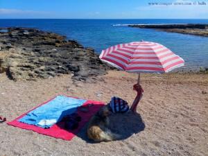 So viel zum Thema Schattenverteilung - Mola di Bari – Italy