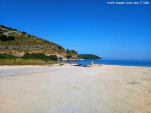 Eine Gruppe Möwen - Platariá – Greece