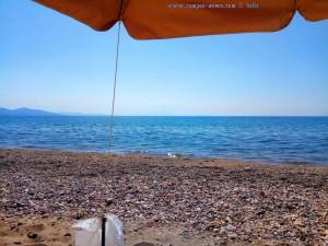 Meine Aussicht vom Strandplatz - Papa Aloni – Greece