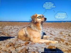 Nicol wartet auf ihren Sonnenschirm ;)