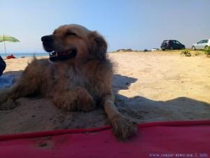 Nicol nach einem Fußbad - Ikismos Lefkes – Greece