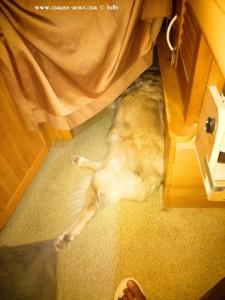 Nicol schläft nicht in ihrem Bett - Greece