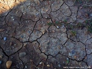 Die Erde trocknet langsam wieder - Ikismos Lefkes - Greece