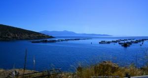 Fischaufzucht-Becken - on the Road – Greece