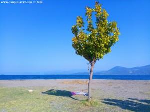 Mein Schattenspender - Akti – Greece