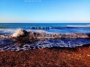 Braunes Wasser und viele Algen am Lagkouvardos Beach – Greece