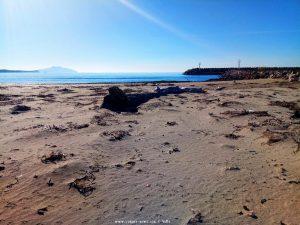 Das Treibholz war im Oktober 2018 schon hier gewesen am Vivari Beach - Greece