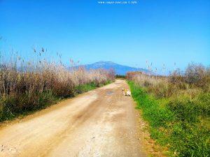 Auf dem Weg zum Kazarma Eucalyptus Beach – Greece