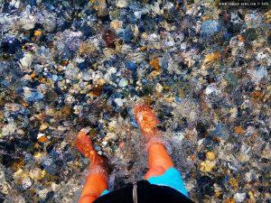 Die Strömung der Quelle ist beachtlich - Cheronisi Beach – Greece