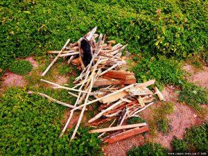 Feuerholz für das Barbecue ist gesammelt - Metamorfosi Beach – Greece