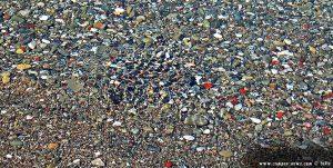 Minifische machen Wellen am Metamorfosi Beach – Greece