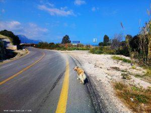 Mit Nicol auf Spaziergang wieder zurück zum Metamorfosi Beach - Greece