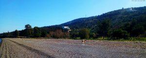 Mit Nicol auf Spaziergang - Metamorfosi Beach – Greece