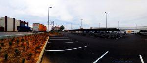 Was wächst da wohl bei Lidl auf dem Parkplatz in Mesolongi – Greece?