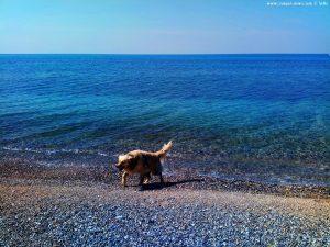 Nicol nimmt ein Fussbad - Kanali Beach – Greece