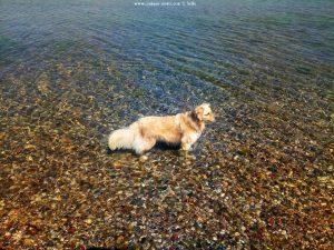 Nicol nimmt ein Fussbad - Akti – Greece