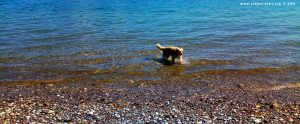 Nicol nimmt ein Fussbad - Akti – GreeceNicol nimmt ein Fussbad - Akti – Greece